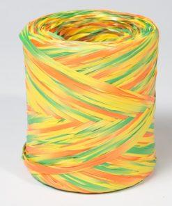 Polirafia multicolor